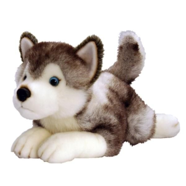 Husky Soft Toy